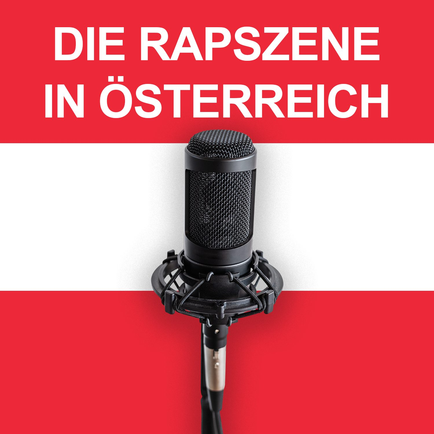 You are currently viewing Die Rapszene in Österreich